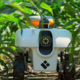 Basso joins $20 Million AI initiative for the Future of Sustainable Agriculture